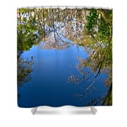 Reflection Shower Curtain by Denise Mazzocco