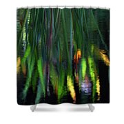 Reflection In The Pond Shower Curtain