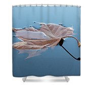 Reflection Shower Curtain by Jane Ford