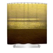 Reflections 95 Shower Curtain