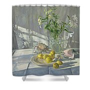 Reflections And Shadows  Shower Curtain by Timothy  Easton