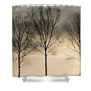 Reflections In Grey II Shower Curtain