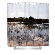 Reflections In The Everglades  Shower Curtain