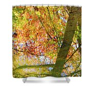 Reflections Of A Colorful Fall 001 Shower Curtain