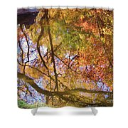 Reflections Of A Colorful Fall 002 Shower Curtain