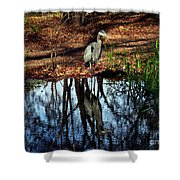 Reflections Of A Heron Shower Curtain