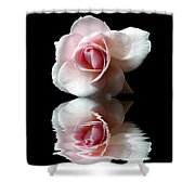 Reflections Of A Rose Shower Curtain