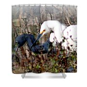 Reflections Of Different Colors - Living In Harmony Shower Curtain