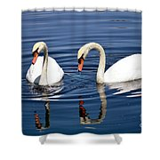 Reflections Of Elegance Shower Curtain