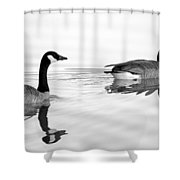 Reflections Of Geese Shower Curtain