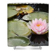 Reflections Of Lily Shower Curtain