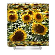 Reflections Of Sunflowers Shower Curtain