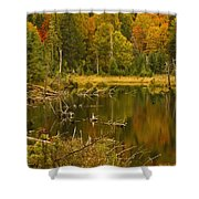 Reflections Of The Fall Shower Curtain