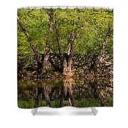 Reflections Of The Past Shower Curtain