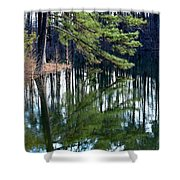 Reflections Of The Pine Shower Curtain