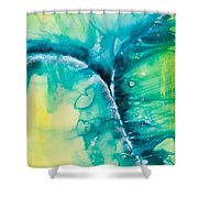 Reflections Of The Universe No. 2026 Shower Curtain