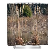 Reflections Of Winter Past 2014 Shower Curtain