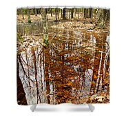 Reflections On A Forest Floor Shower Curtain