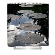 Reflections On A Lily Pond Monet Shower Curtain