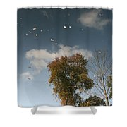 Reflective Thoughts  Shower Curtain