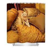 Regal Feline Shower Curtain