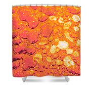 Regosol Shower Curtain