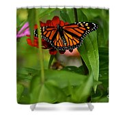 Regular Visitor Shower Curtain