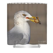 Relatives For Dinner Shower Curtain