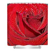 Relevance Of Love Shower Curtain