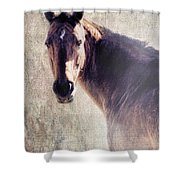 Reliability Shower Curtain