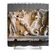 Relief Depicting Gigantomachy Shower Curtain by Artur Bogacki