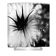 Relish The Rude  Shower Curtain