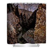 Remarkable Rocks Shower Curtain
