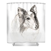 Remembering Maggie - A Tribute To A Collie Shower Curtain