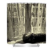 Remembering The Softness Of Your Touch Shower Curtain