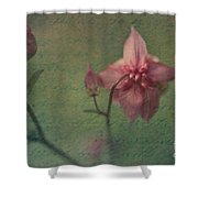 Reminiscences  Shower Curtain