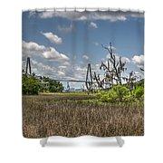 Remleys Point Bridge View Shower Curtain