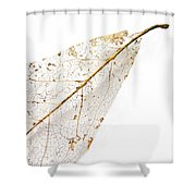 Remnant Leaf Shower Curtain
