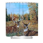 Rendezvous Whitetail Shower Curtain