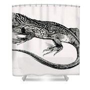 Reptile Shower Curtain