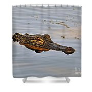 Reptile Reflection Shower Curtain