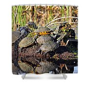 Reptile Refuge Shower Curtain