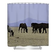 Reservation Horses 4 Shower Curtain