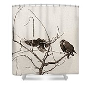 Rest Area I Shower Curtain