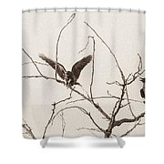 Rest Area II Shower Curtain