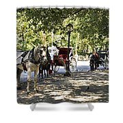 Rest Stop - Central Park Shower Curtain