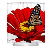 Resting Monarch Shower Curtain
