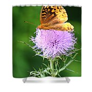 Resting On A Thistle Shower Curtain