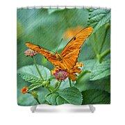 Resting Orange Butterfly Shower Curtain
