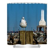 Resting Spot Shower Curtain